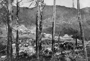 The village of Maungapohatu, deep in the Urewera Forest. Source: NZHistory.net.co.nz