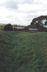 Rangiriri today showing remains of trenches used by Māori to defend against the British who attacked from the right of picture, and from the river behind the Pā.