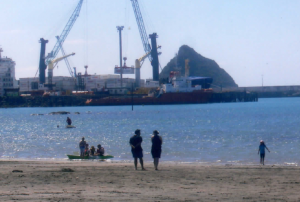 Busy Harbour - the Port at Ngāmotu, near the site of our proposed marae, on Ngāmotu Beach, New Plymouth.